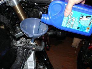 froid précaution automobile